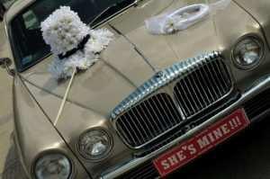 wybór samochodu na wesele