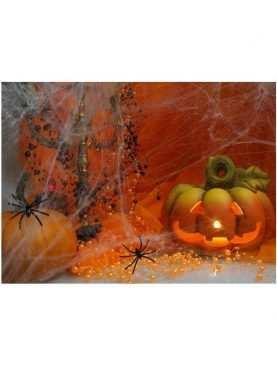 Sztuczna pajęczyęczyna 60 g + dwa pająki